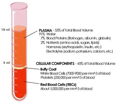 Platelet Rich Plasma Therapy Los Angeles & Beverly Hills